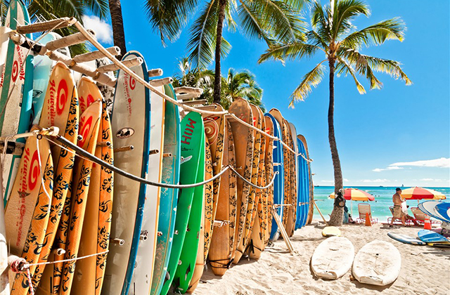 Should You Buy A Surfboard Online Or At Your Local Surf Shop?